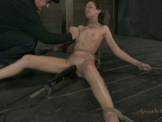 Vulnerable black head Hailey Young moans while undergoing BDSM tests